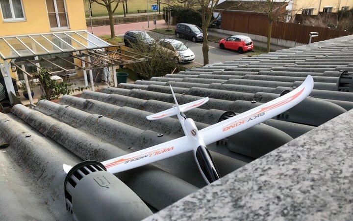 Neuer Dachbewohner